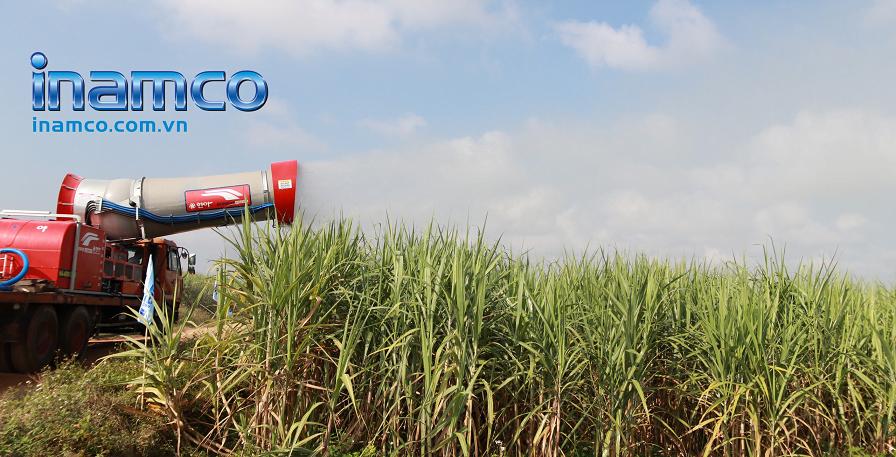 Máy Ecowide phun thuốc trừ sâu trên cánh đồng mía