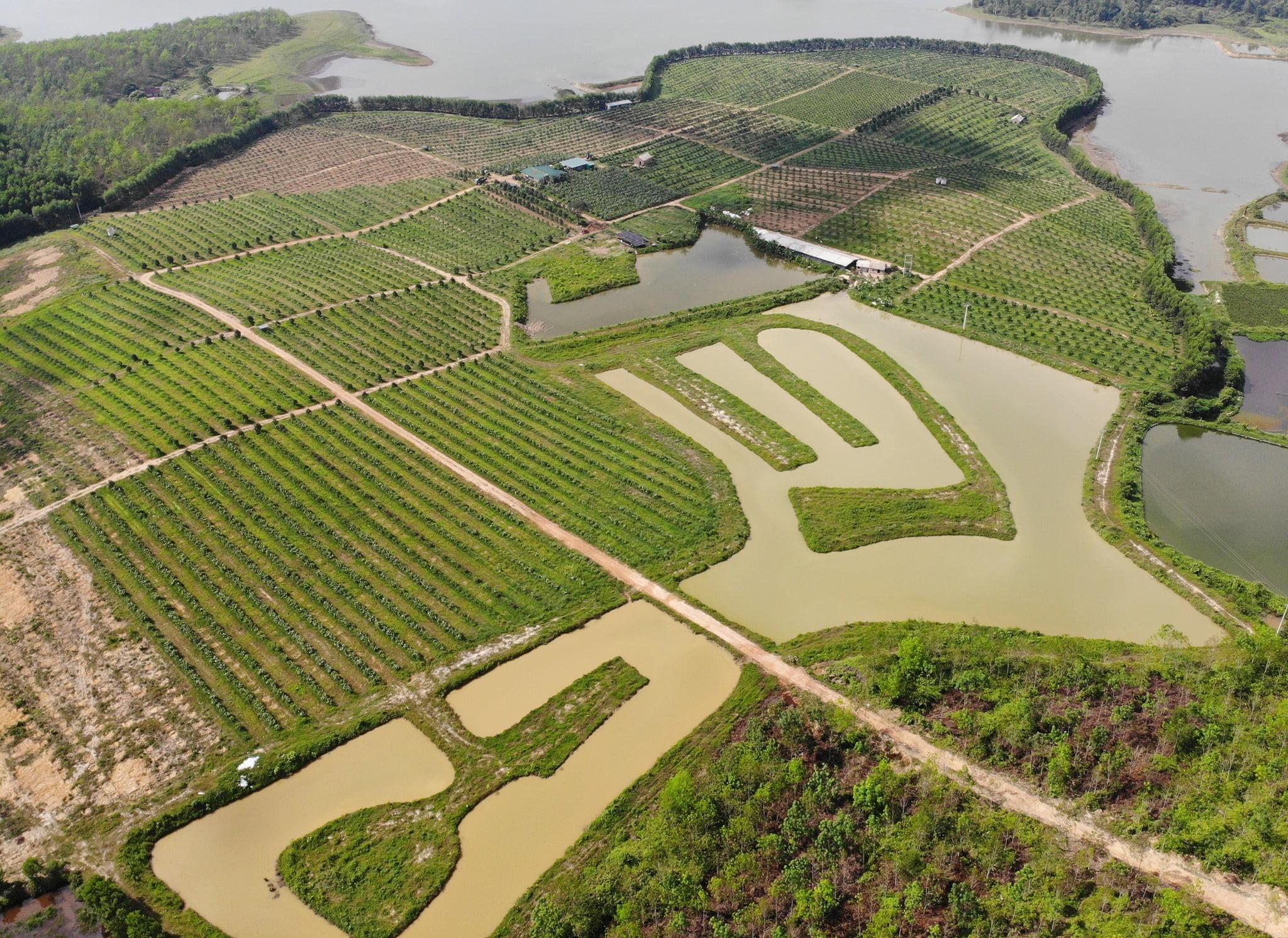 Toàn cảnh HTX nông nghiệp Gia Phúc